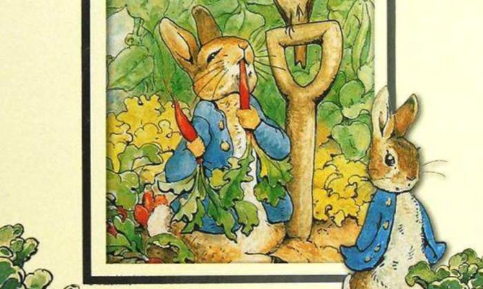 黎姐姐绘本阅读:《彼得兔的故事》